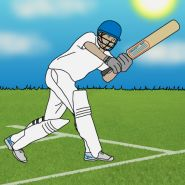Increase cricket participation in your school